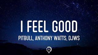 Pitbull x Anthony Watts x DJWS - I Feel Good (Lyrics) I don't know about you, but I feel good