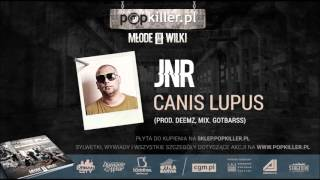 02. JNR - Canis Lupus [Popkiller Młode Wilki 4 (2015)]