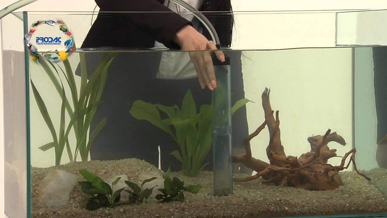 Prodac guida al cambio dell 39 acqua dell 39 acquario youtube for Acqua acquario