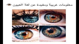 تعلم كل شيء عن لغة العيون في الحب والاعجاب | eye language