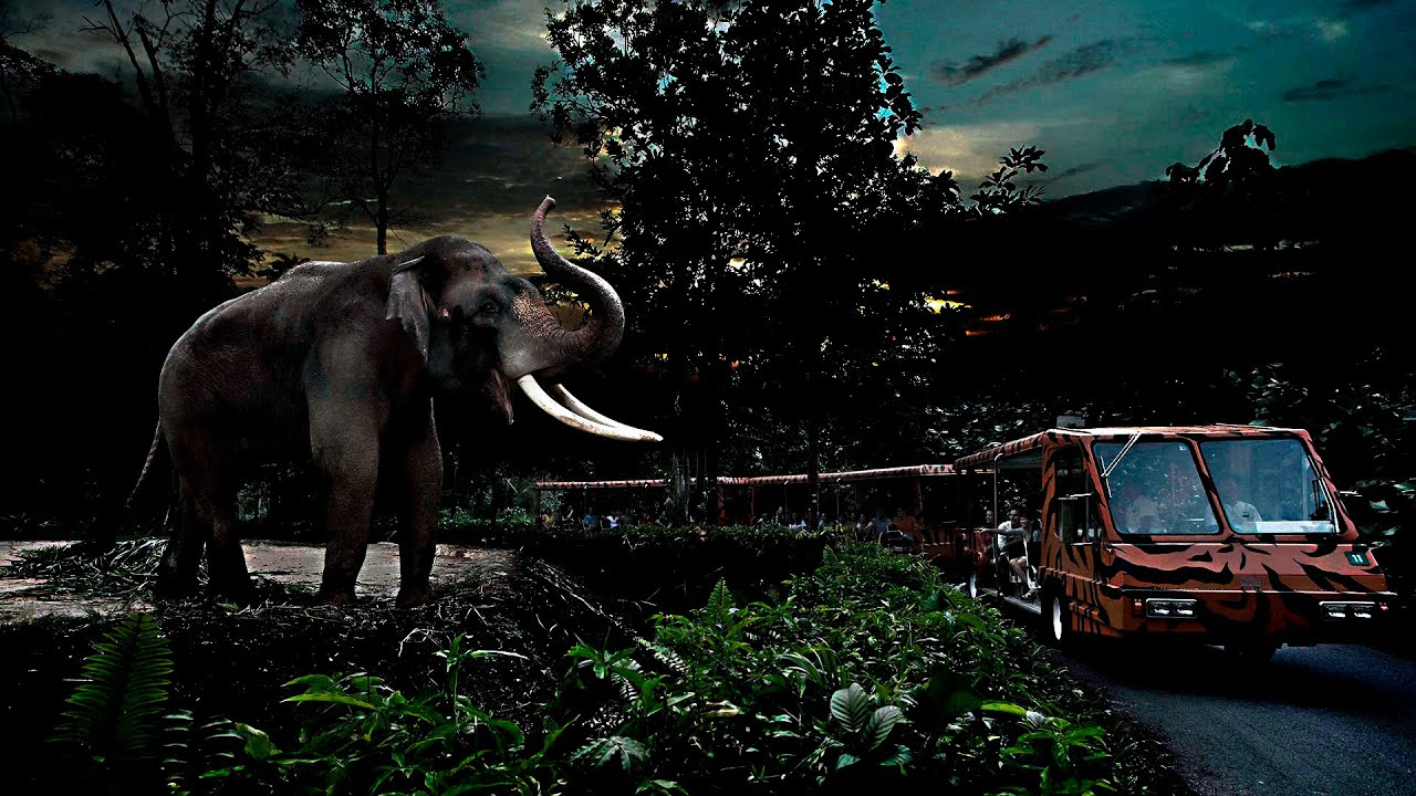night safari singapore with animal show and fire eating. Black Bedroom Furniture Sets. Home Design Ideas