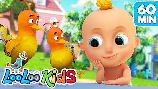 Two Little Dickie Birds - The BEST SONGS for Kids | LooLoo Kids