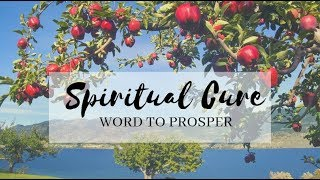 Spiritual Cure - Word to Prosper
