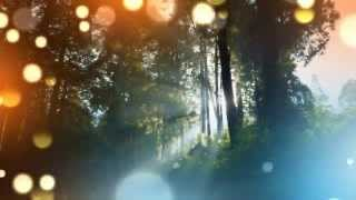 Gentle Music For Healing Re Y Relaxing Tranquility Relaxation With Isochronic Tones