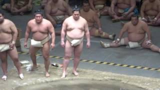 20170503 大相撲夏場所 稽古総見 横綱白鵬vs正代、貴ノ岩など.