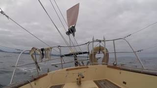 Sailing a small junk-rigged boat in Northland, New Zealand