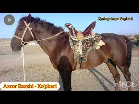 Axror Baxshi - Ko'pkari