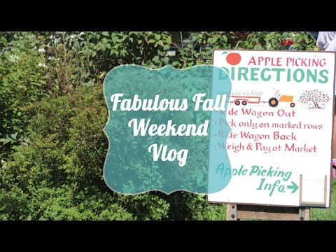 Target Dollar Bins and Apple Picking | Fabulous Fall Weekend Vlog!