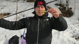 Рыбалка выходного дня на озере Замудонском 31 03 2020