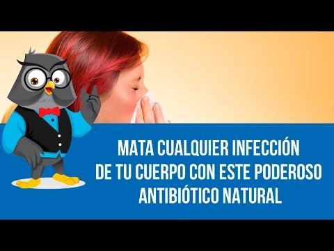 Mata Cualquier Infección De Tu Cuerpo Con Este Poderoso Antibiótico Natural