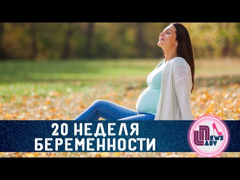 20 Двадцатая неделя беременности! Экватор!