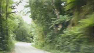 Driving on Dorothy Falls road, around Lake Kaniere in Westland, New Zealand