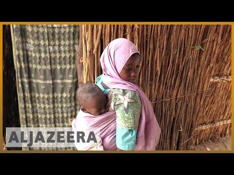 🇳🇪 Boko Haram attacks the most vulnerable in Niger | Al Jazeera English