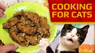 Cooking for Cats - How to make Cookies for cats and kittens (Quick And Easy Recipe)