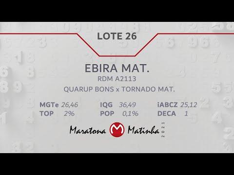 LOTE 26  Maratona Matinha