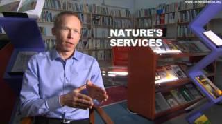 Johan Rockström - Ecosystem Services
