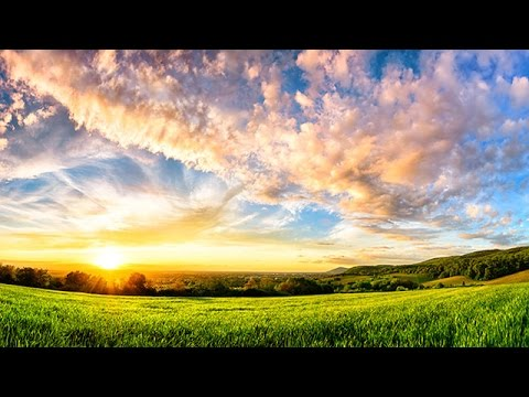 6 Hour Ambient Soundscape: Relaxing Nature Summer Sounds - An English Country Meadow