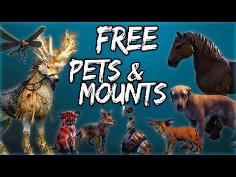 FREE PETS & MOUNTS in Elder Scrolls Online (ESO Guide)