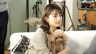 YouTube動画:川口春奈が犬と戯れるほっこりメイキング映像も! CMソングはマカロニえんぴつ「たしかなことは」 コンタクトレンズ『CREO』新TVCM「やさしいレンズでいきますか?」篇