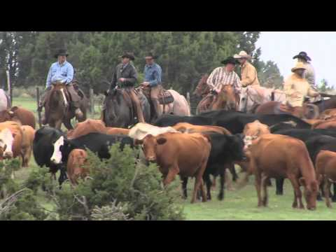Ranch Land Experts - United Country Real Estate