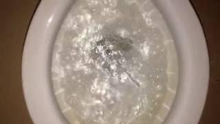#304: Rare Early 1950s Crane Baby Toilet