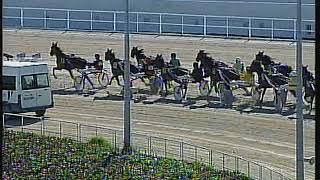Vidéo de la course PMU PREMI TRASGO MIXO