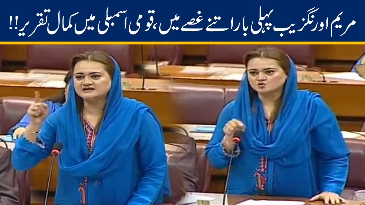 Maryam Aurangzeb Fiery Speech On Imran Khan in National Assembly | 24 June 2019