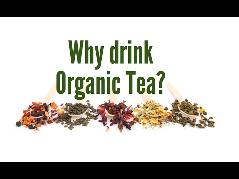 Why Should I Drink Organic Tea?