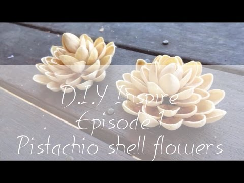 Pistachio Shell Flowers D I Y Inspire