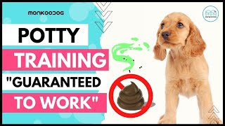 Step by step guide  To POTTY  Train Your Puppy   easily. II Puppy Training tips. II