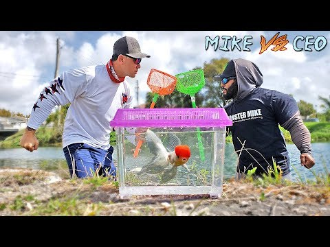 Netting EXOTIC FISH For Aquarium - Fishing Challenge!