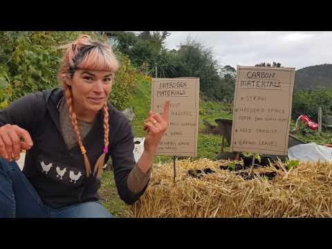 Crisis Gardening: Fresh Food Fast