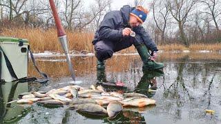 Что НУЖНО ОКУНЮ в этом ГОДУ Зимняя Рыбалка
