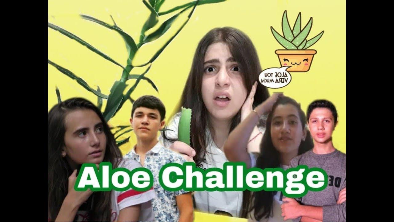 Download Aloe Vera Challenge! Մարտահրավեր\Ani Makaryan\Kar Comedy\Shushan Pashinyan\Вызов TV #youtubeAM