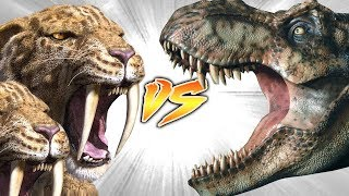 2 Saber-toothed tigers VS Tyrannosaurus rex?!