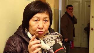 """Т.Исмаилова """"Мыйзамсыз айып такканы учун УКМК кечирим сурасын"""""""