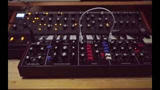 Behringer Model D vs. Moog Sub37 - comparing the sound (Riamiwo StudioVlog 89)