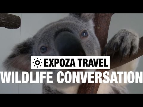Wildlife Conversation (Australia) Vacation Travel Wild Video Guide