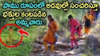 పాము రూపంలో భక్తుల కంటపడిన అమ్మవారు..! || History Of Sri Gubbala Mangamma Temple || Sumantv