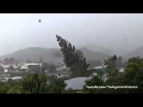 New Zealand: Tree topples in wake of Cyclone Ita
