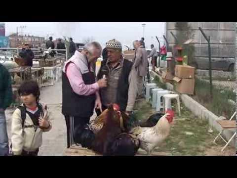 Adapazarı Tavuk Pazarı'nda Yok Yok   Şaban Mergül