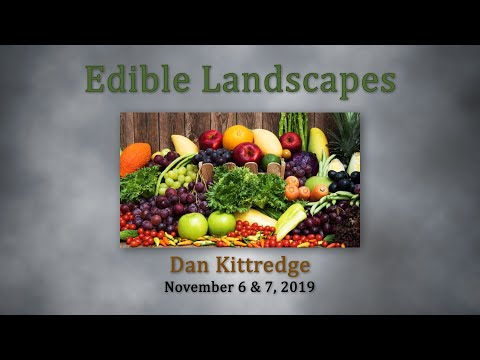 Dan Kittredge BSC Nov 2019 Part 1   Principles of Biological Systems  vo2