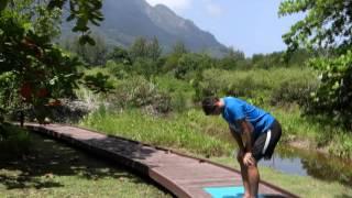 Uttanasana - Standing forward bend (sequence 2)