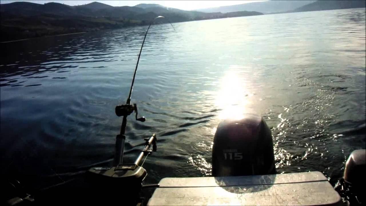 Lake chelan kokanee 2013 doovi for Lake chelan fishing