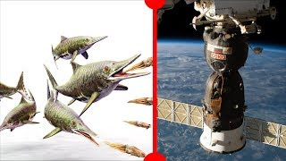 Warm-Blooded Ichthyosaur & Ambitious Spacewalk - 7 Days of Science