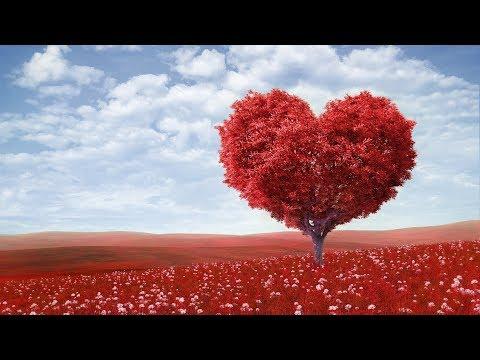 Я Люблю Тебя - Христианская песня ♫ ( Детская Песенка ) ♫