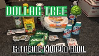 rymingtahn dollar tree haul