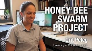 Honey Bee Swarm Project - Orit Peleg