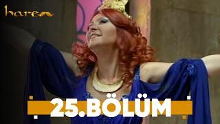 Harem - 25. Bölüm
