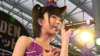 秋に札幌つどーむで開催されたフリーマーケット「ゴールデンマーケット...